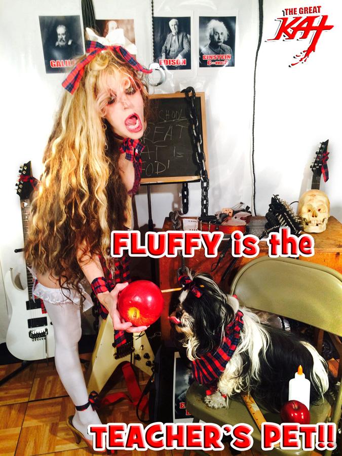 FLUFFY is the TEACHER'S PET!!