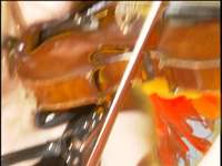 """""""THE FLIGHT OF THE BUMBLE-BEE"""" from """"BEETHOVEN'S GUITAR SHRED"""" DVD!"""