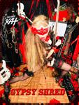 GYPSY SHRED! NEW CD PHOTO!
